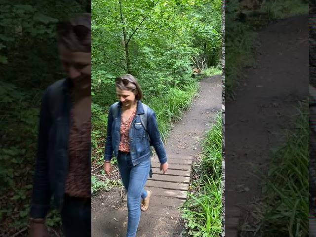 Walking through Quarry Bank part 2