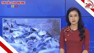 Bản tin Thời sự Nông thôn ngày 01/04/2020 | Tin tức Việt Nam mới nhất | Tin tức 24h