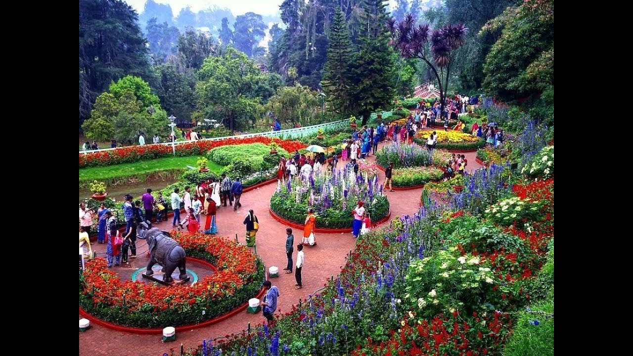 Marvelous A Visit To The Ooty Botanical Garden, Tamil Nadu, India