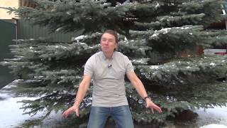Как наполниться   Женщине - благосостоянием    Фролов Олег