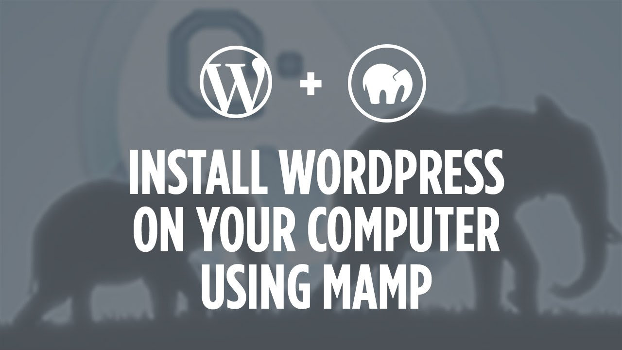 How to install WordPress on your computer using MAMP