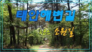 태안해변길 2코스 소원길 신두리~ 만리포