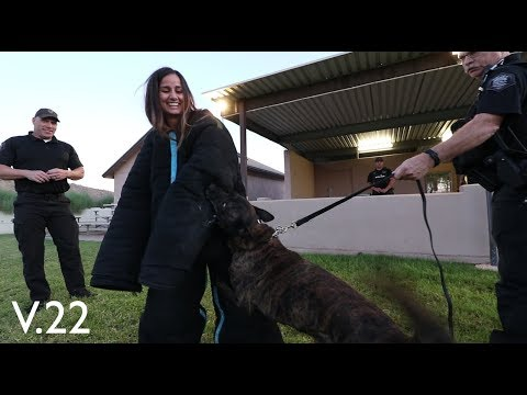 Mesa Police K9 Unit: Vlog 22