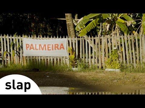 Silva - Palmeira Álbum Brasileiro