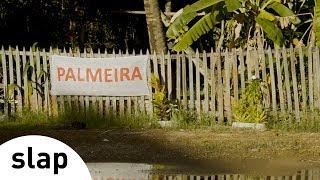 Silva - Palmeira (Álbum Brasileiro)