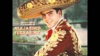 Voy   -   Alejandro Fernández