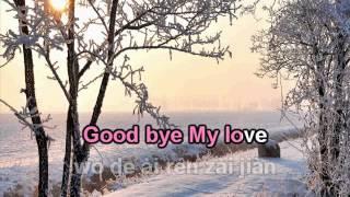 Goodbye my love Đặng Lệ Quân karaoke beat 再见我的爱人 伴奏