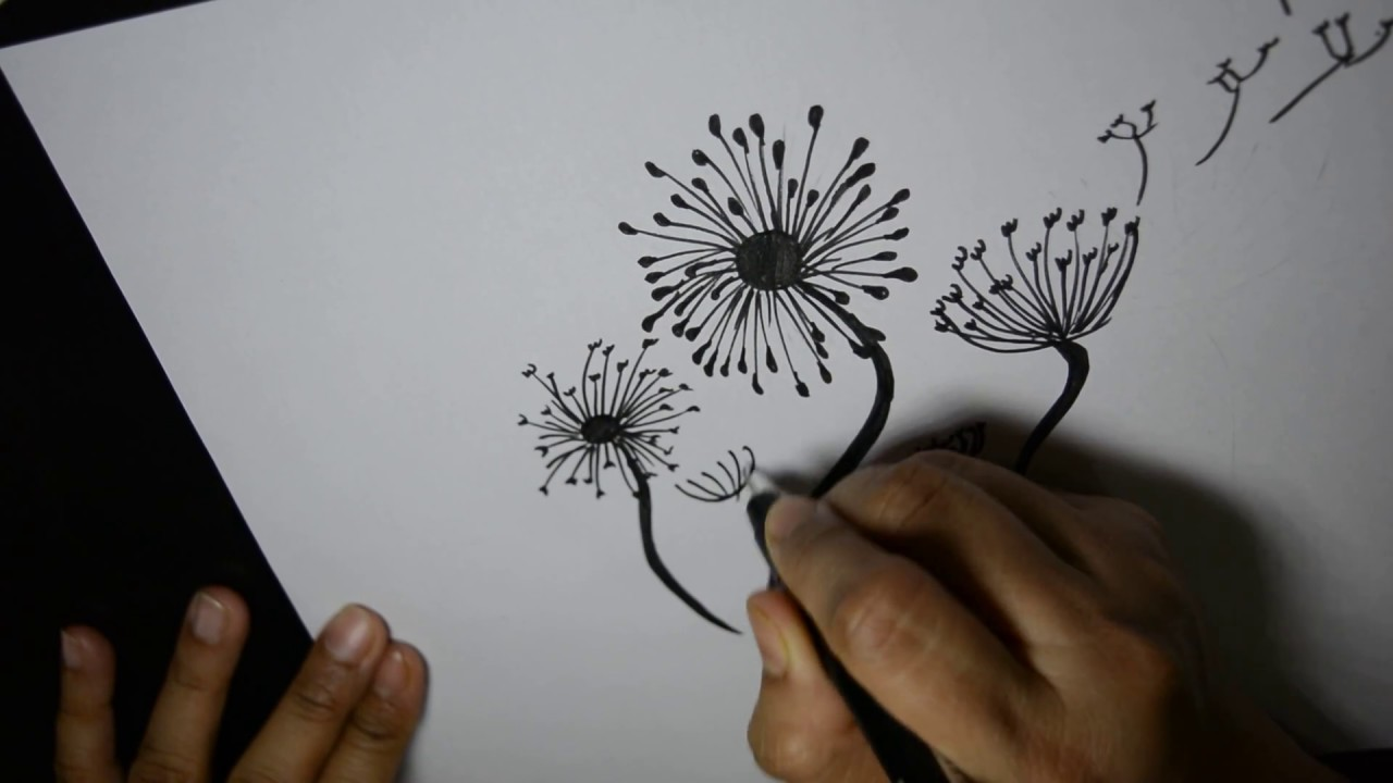 How to draw dandelions step by step youtube for How to draw a dandelion step by step