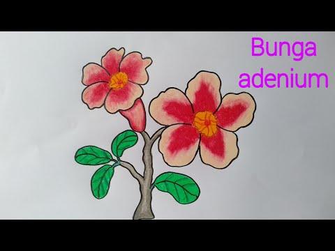 Full Download Menggambar Bunga Matahari Mewarnai Dengan Gradasi