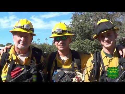 The Florida Forest Service: Who We Are