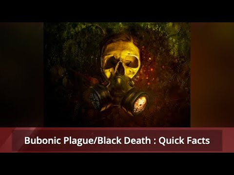 Bubonic Plague / Black Death found in China- Cause ...
