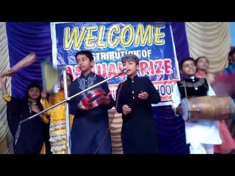 Sadiq public school system dhudi wala fsd