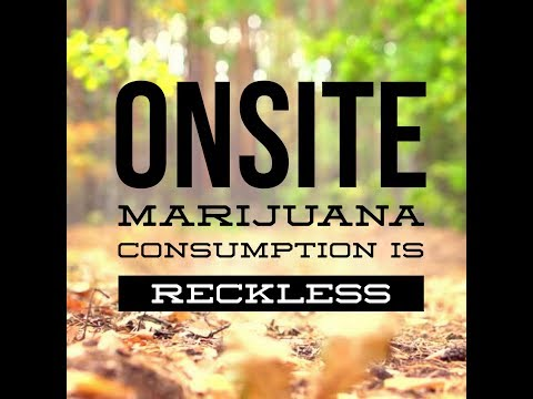 Onsite Marijuana Is Reckless