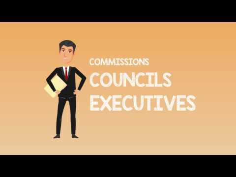 What Does a County Commissioner or Council Member Do?