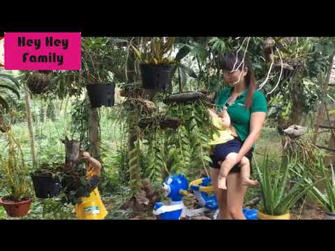 Breastfeeding baby on demand: Mom teaching baby orchid care thumbnail