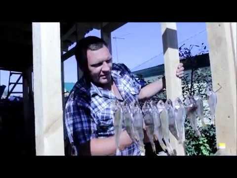 Вялим рыбу без мух!!! №1
