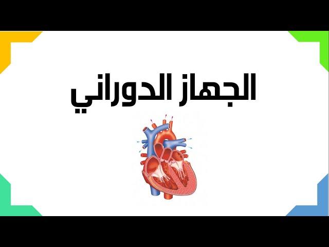الجهاز الدوراني  - العلوم والحياة - الصف التاسع الأساسي - المنهاج الفلسطيني