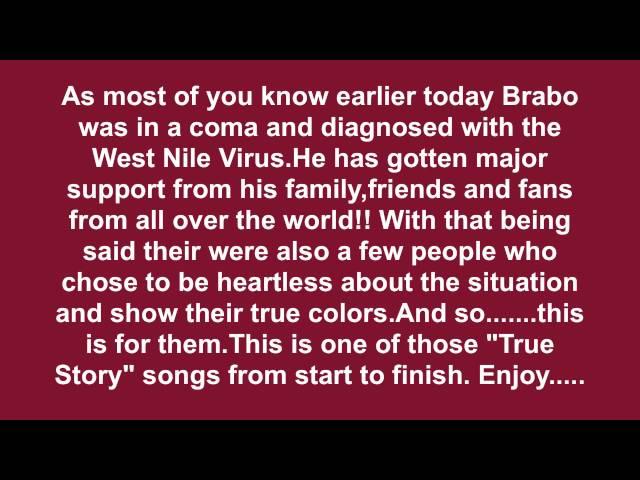 Brabo Gator- Damn Homie
