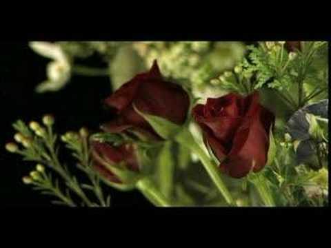 Florist 5992_01