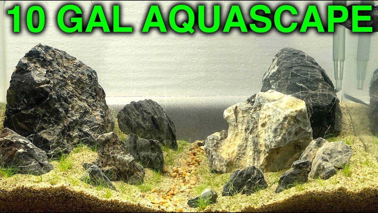 Download 10 Gallon Aquarium Aquascape