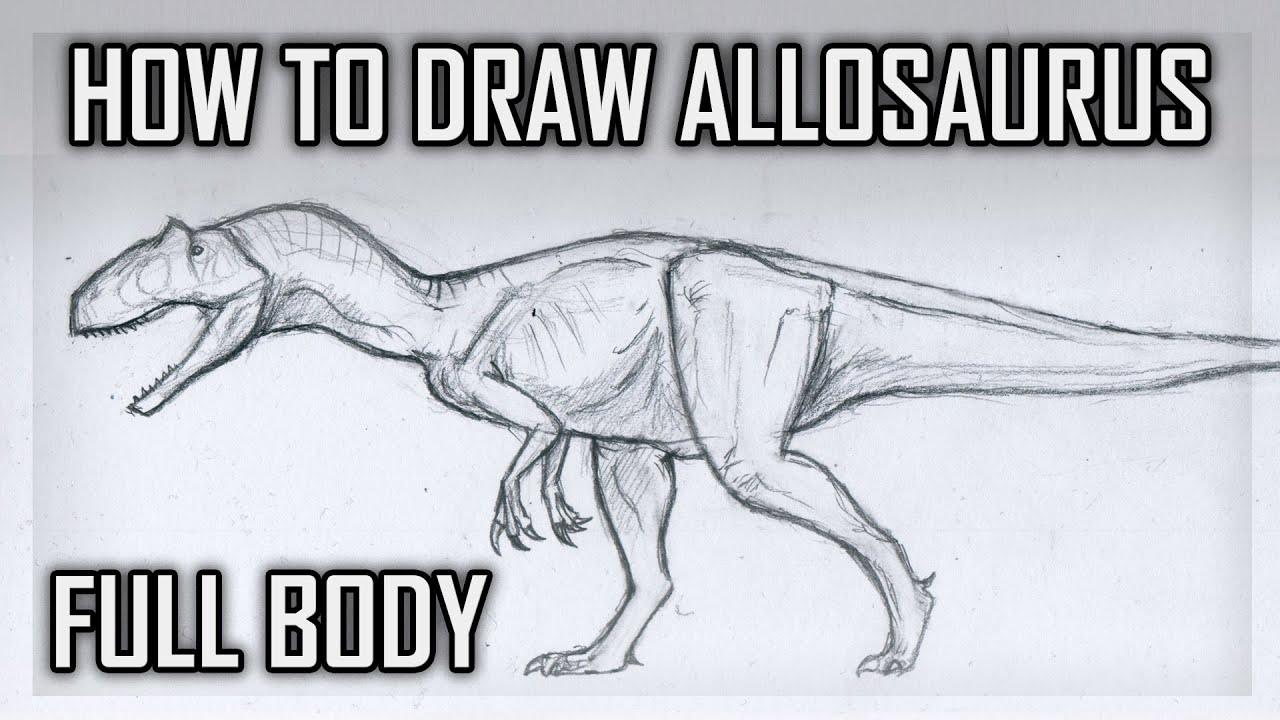 how to draw allosaurus full body youtube