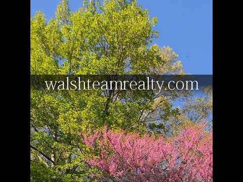 Property For Sale In Virginia, Gainesville VA Townhomes For Sale   DC Condos