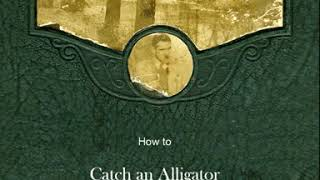 How to Catch an Alligator
