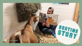 Mama Maybel Gets a Bedtime Story | Goats of Anarchy