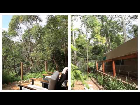 Luxurious Camping in Tandara Tent, Lane Cove National Park