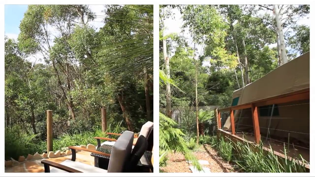 Luxurious C&ing in Tandara Tent Lane Cove National Park & Luxurious Camping in Tandara Tent Lane Cove National Park - YouTube