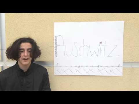 Jewish-American History project