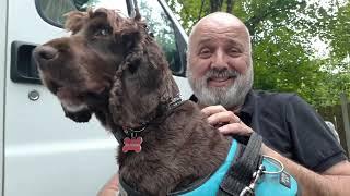 Charlie & Me Our Hoilday's 2019 Lough Ennell Caravan Park