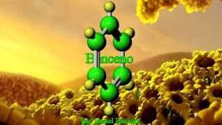 Benzene: 3D Aromatic Hydrocarbon
