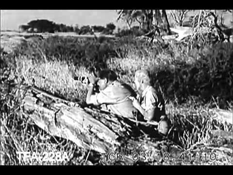 On Safari 1957