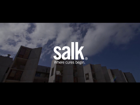 Salk architecture - introduction