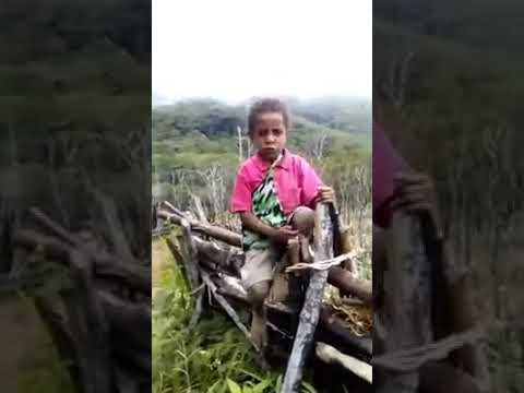 PNG Kids Learning Tools