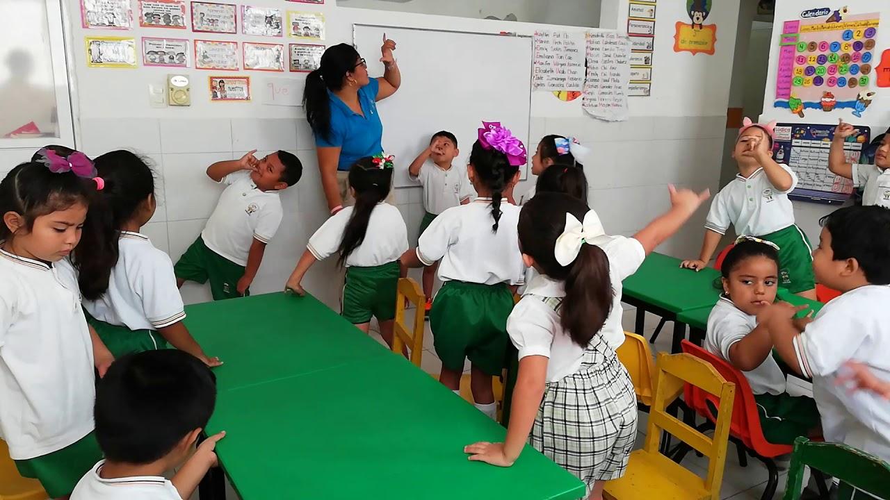 Download Liota English ESL Teaching at CEIDI, Merida Mexico