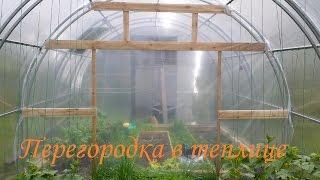 перегородка в теплице. Как вырастить огурцы и помидоры в одной теплице