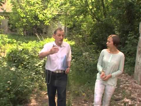 Рыбинск обсуждает продажу усадьбы Михалково