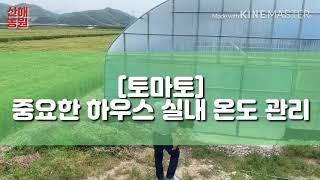 [산해농원] 중요한 토마토 하우스 실내 온도 관리