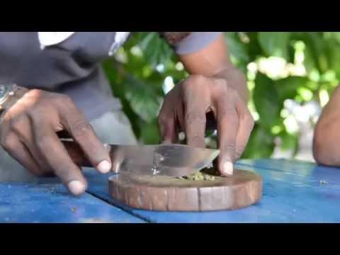 JAH Rastafari! Smoking the Chalice with Kyng Sharlo