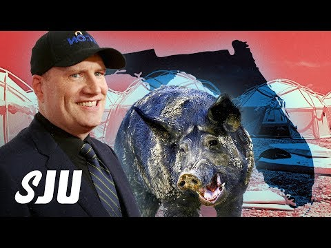2019 Stories That Should Be Movies | SJU