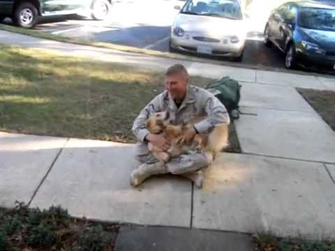 Dog welcomes soldier returning home from afghanistan youtube dog welcomes soldier returning home from afghanistan m4hsunfo