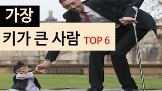 (랭킹박스) 가장 키가 큰사람 TOP 6