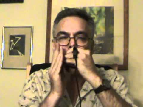 "Ken Leiboff plays ""Salt Creek"" on harmonica"