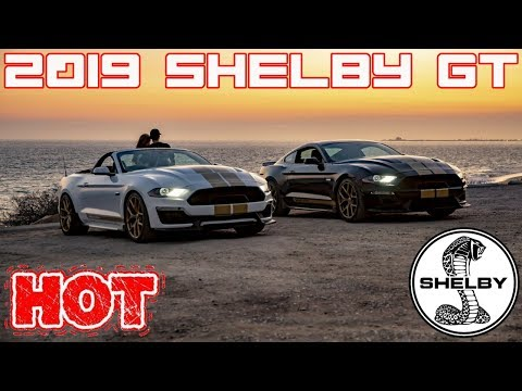 2019 Ford Shelby GT Full Details (Reveal, and Pricing)