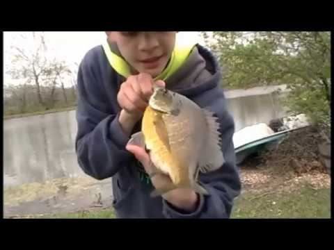 Catch n' Clean Crappie and Bluegill SLABS! (Master Angler caught!)