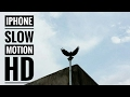 iPhone slow motion @120fps (Clip 2) 2017