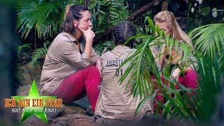 Dschungelcamp 2020   Highlights Tag 11 - Sonja geht, Danni kassiert Vorwürfe & Miese Stimmung