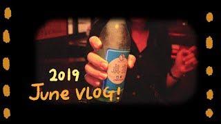 6월 vlog : 종강…